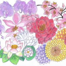 Flowers 9-2020